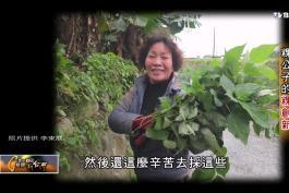 一步一腳印_20150118_410_3(TVBS DMDD) - YouTube (1080p)_201551312317